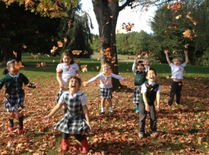 fun-with-leaves
